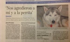 Noticia_agresion_perros